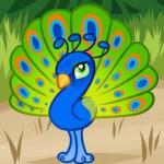 تعلم رسم طاووس