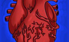 كيف ارسم قلب حقيقي